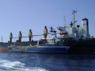 專業貨船租賃與交易服務